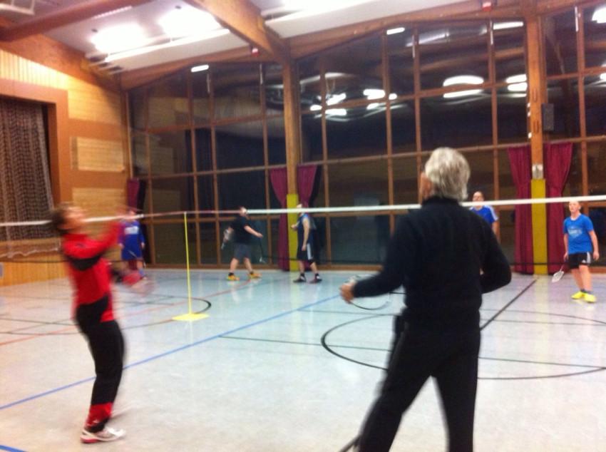 Badminton in der Waldeseehalle